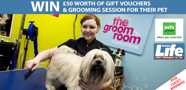 Win £100 worth of Pets at Home Vouchers